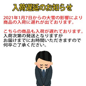 ワンピース ワールドコレクタブルフィギュア - ワノ国6 - 4種セット 2021年1月仮予約