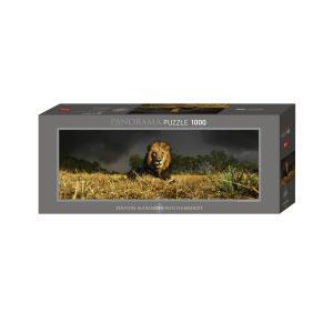 HEYE PUZZLE  29518 1000ピース Lion (PHOTO:Alex Bernasconi)  [ヘイパズル]|toyskameta