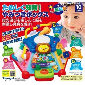 【オンライン限定価格】たのしく知育!やみつきボックス|toysrus-babierus|02