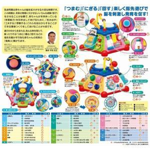 【オンライン限定価格】たのしく知育!やみつきボックス|toysrus-babierus|06