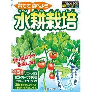 ペットボトルと水で種から育てる室内用の家庭菜園キットです。全5種(サニーレタス・ミニトマト・サラダ水...