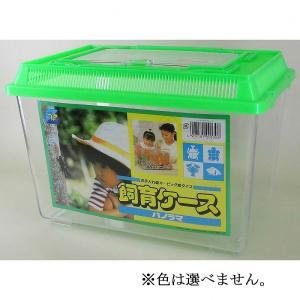 カブトムシなどの昆虫の飼育や、捕獲した生物の観察などに便利なケースです。フタがワイドなパノラマタイプ...