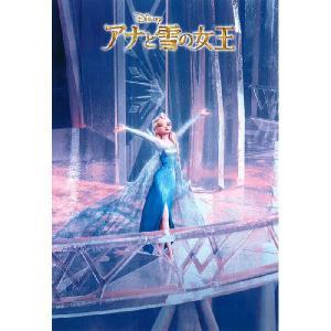 ディズニー ジグソーパズル 500ピース アナと雪の女王 雪の女王エルサ D-500-458 |toystadium-jigsaw