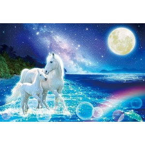 ジグソーパズル 1000ピース 光るパズル ウィルファー 蒼海の絆 49x72cm 91-131|toystadium-jigsaw