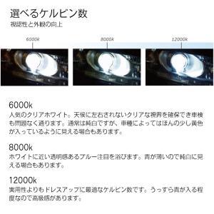 55W D2R D2S 純正交換HIDバルブ 6000K 8000K 12000K フィリップス クォーツ製 高純度グラスジャケット採用 オスラム社同様PEI採用 ヘッドライト 1年保証|tradingtrade|08