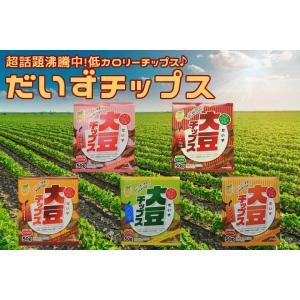 【10袋セット】大豆チップス ダイエット食品 スポーツ食品 5種類 置き換えダイエット
