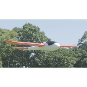 エアライダーズ オレンジウィング|trane-shop|02