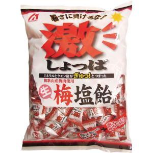 熱中飴 梅塩飴 1kg 和歌山産梅肉使用 (HO-163)熱中症対策/塩/タブレット