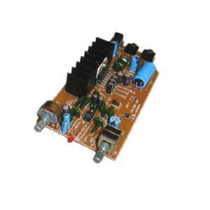 最大15W+15Wステレオアンプ基板 CZ−01A ACアダプター付き|transaudio