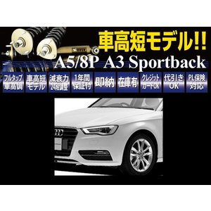 RUSH 車高調 アウディ A3 スポーツバック A5 2WD 車高短 モデル フルタップ車高調 全長調整式車高調 減衰力調整付 RUSH Damper IMPORT CLASS|transport5252