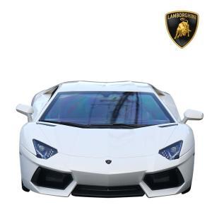 アヴェンタドール LP700-4 1/10 RC ランボルギーニ正規ライセンス品 ラジコン ホワイト  ミニカー|treasure-com|03