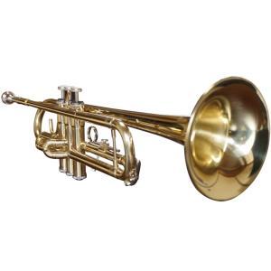 トランペット 初心者入門セット 管楽器 trumpet