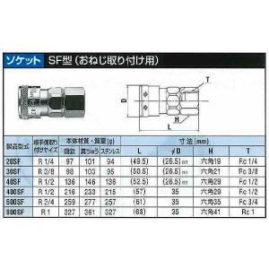 日東工器 ハイカプラ 真鍮製 20SF-BSBM treasuretown 02