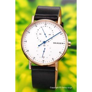 スカーゲン 腕時計 メンズ SKAGEN Signature SKW6390|trend-watch