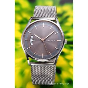 スカーゲン 腕時計 メンズ SKAGEN Holst SKW6396|trend-watch