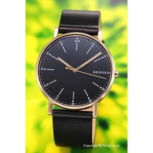 スカーゲン 腕時計 メンズ SKAGEN Signatur SKW6401|trend-watch