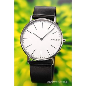 スカーゲン 腕時計 メンズ SKAGEN Signatur Titanium SKW6419|trend-watch
