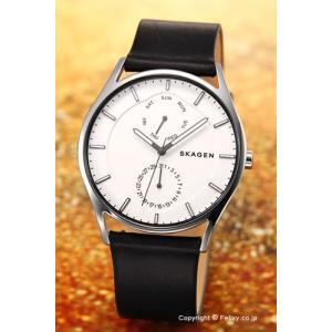 スカーゲン SKAGEN 腕時計 メンズ Holst Multi-Function SKW6382|trend-watch
