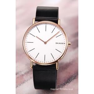スカーゲン SKAGEN 腕時計 メンズ Signatur Titanium SKW6430|trend-watch