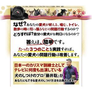ダメ犬脱出、藤井聡の犬のしつけ方法DVD 日本一のカリスマ訓練士、藤井聡指導