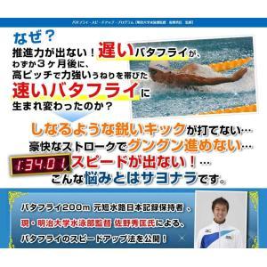 バタフライスピードアッププログラム 水泳DVD バタフライが速くなる方法 水泳バタフライ日本記録更新者、佐野秀匡監修