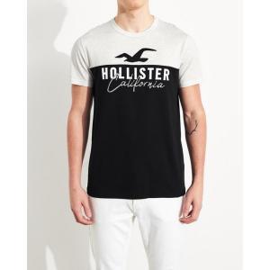 ホリスター ロンT メンズ  Tシャツ 長袖Tシャツ 迷彩 ブラック 大きいサイズ xl xxl アバクロ アメリカンイーグル