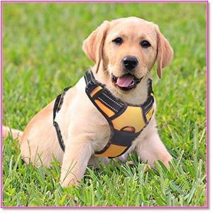 犬ハーネス中型犬8-23KG胴輪調節可能歩行補助引っ張り防止咳き込み軽減反射材ハンドル付き安全通気 オレンジ  0522|trepakgogo