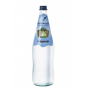 Sanbenedetto サンベネデット スパークリングウォーター グラスボトル 1000ml×12本|tricycle