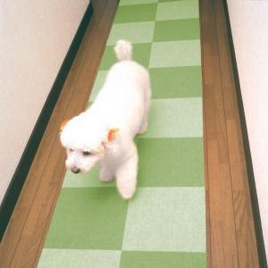 N.おくだけタイルマット 20枚組(BR GR タイルマット タイルカーペット ペット用品 犬)|tricycle