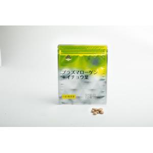 プラズマローゲン+イチョウ葉(1ヶ月分30粒入り)|trinityjp