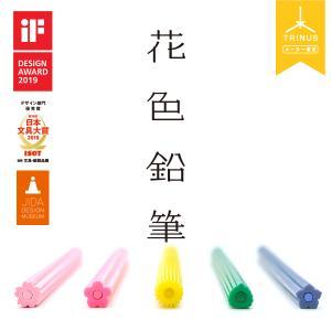 花色鉛筆(鉛筆削り付き)Flower Pencils HANA色鉛筆 塗り絵 油性 5色セット かわ...