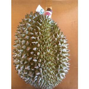 タイ産ドリアン Lサイズ 約2.5kg〜3.0kg 3玉入り(モントーン種)