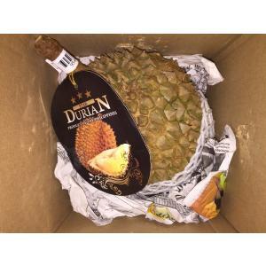 フィリピン産ドリアン  約2.0kg〜3.0kg 大玉Lサイズ 1玉
