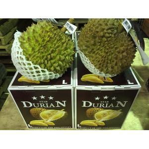 フィリピン産ドリアン  約2.0kg〜3.0kg 大玉Lサイズ 2個セット