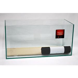 幅45cm・スリムタイプ・フレームレスガラス水槽です。