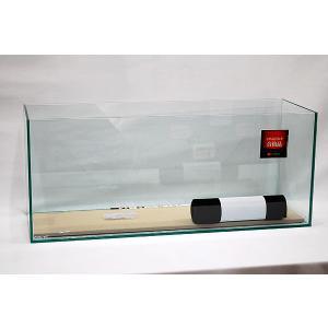 幅60cm・スリムタイプ・フレームレスガラス水槽です。