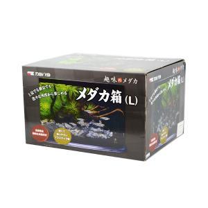 カミハタ 趣味のメダカ メダカ箱 L プラスチック製水槽