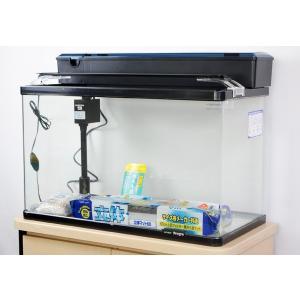 60cm曲げガラス水槽と、上部フィルター、LEDライトなどのお買い得5点セットです。