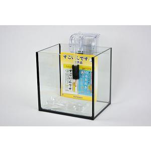 ブラックシリコン仕様20cmフレームレスガラス水槽と外掛け式フィルターのセットです。 ブラックシリコ...