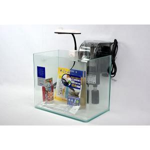 31cmフレームレス曲げガラス水槽とLEDライト、外掛け式フィルターのセットです。