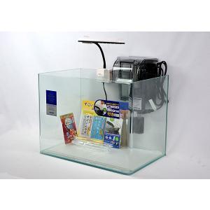 40cmフレームレス曲げガラス水槽とLEDライト、外掛け式フィルターのセットです。
