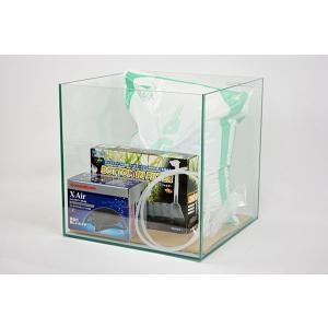 30cmキューブ型フレームレスガラス水槽・シュリンプ飼育セットです。 水槽と底面フィルター、エアポン...