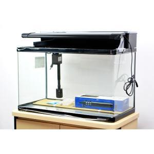 送料無料 ニッソー スティングレー600 LED熱帯魚セット 60cm曲げガラス水槽・熱帯魚飼育セッ...