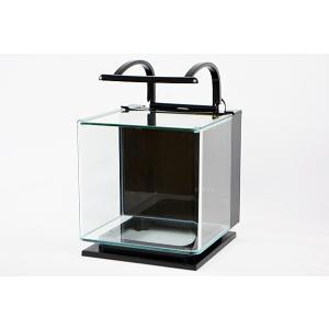 テトラ リビングキューブ12 LC-12 オールインワン・曲げガラスインテリア水槽セット 熱帯魚・ア...