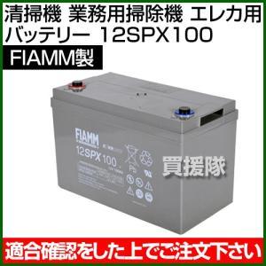 FIAMM 清掃機 業務用掃除機 エレカ用 バッテリー 12SPX100|truetools