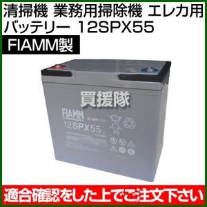 FIAMM 清掃機 業務用掃除機 エレカ用 バッテリー 12SPX55|truetools