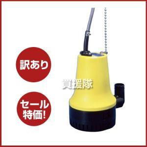 訳あり品 工進 海水用 水中ポンプ マリンペット BL-2524N|truetools