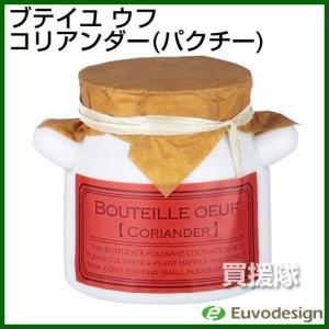 ラッシュ Euvo Design Bouteille oeuf コリアンダー パクチー BO90071|truetools