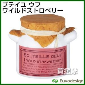 ラッシュ Euvo Design Bouteille oeuf ワイルドストロベリー BO90072|truetools