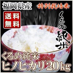 くるめ純米 ヒノヒカリ 20kg 10kg×2袋 くるめ純米|truetools